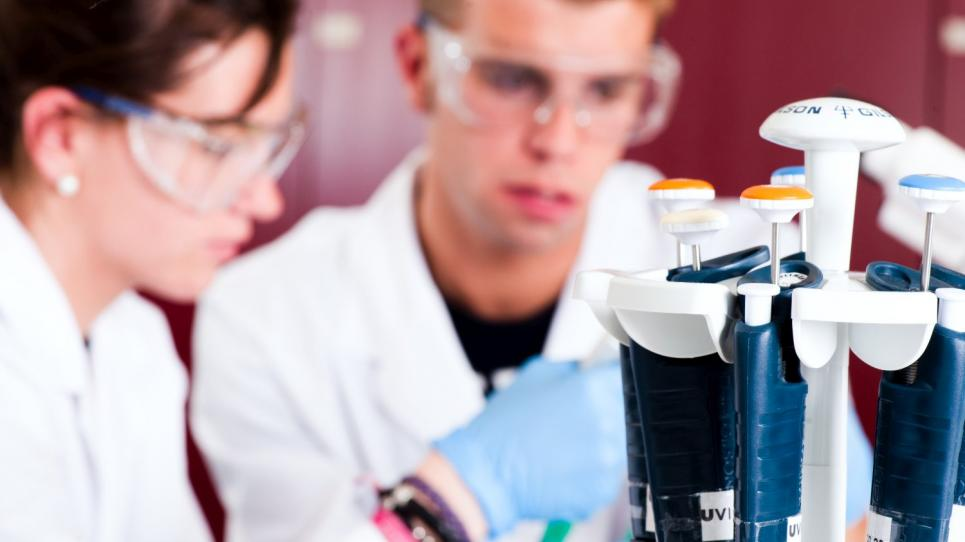 Estudiants al laboratori